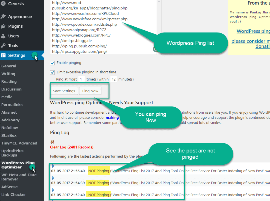 Setting the plugin wordpress ping optmizer