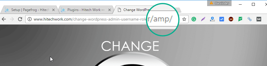 Check AMP plugin working by typing URL