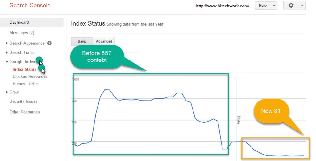 Index status in GWT tool