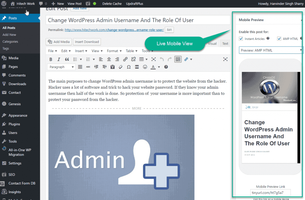 Showing amp window in article
