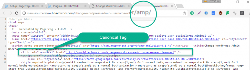 Canonical tag in source code of amp page