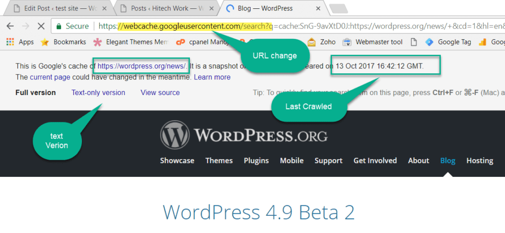 cache version of the page of the wordpress.org