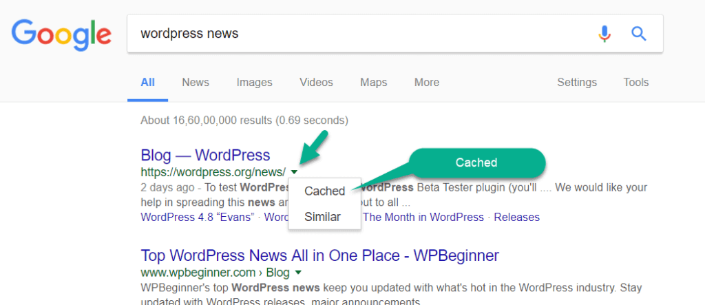 A cached version of the page in search result