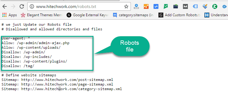 Check Your robots.txt File in browser