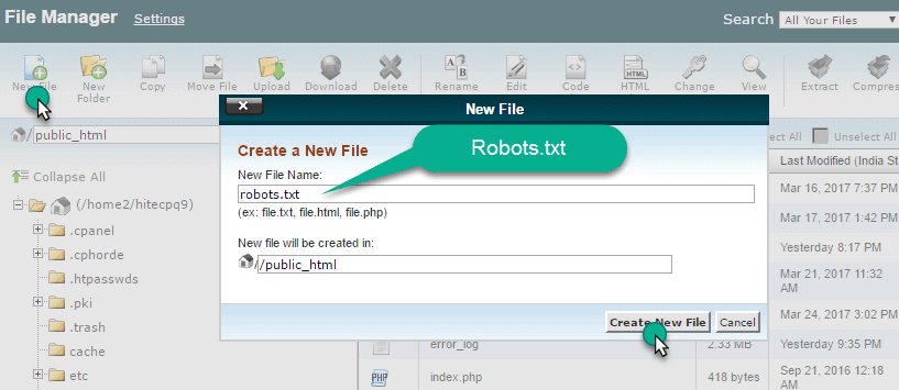 Create a new file in cpanel