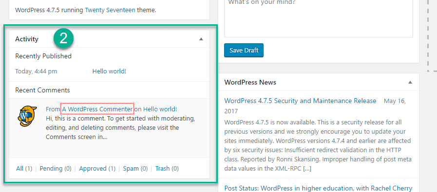Activity option in the WordPress