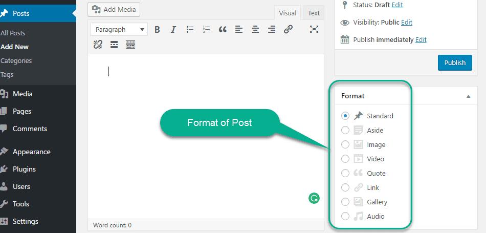 Format of Post in wordpress