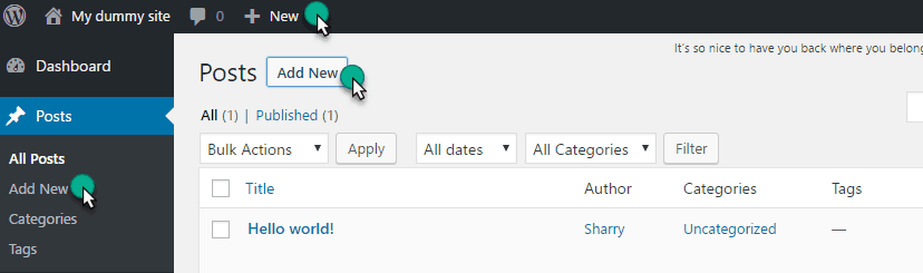 option to Open Post Editor in wordpress