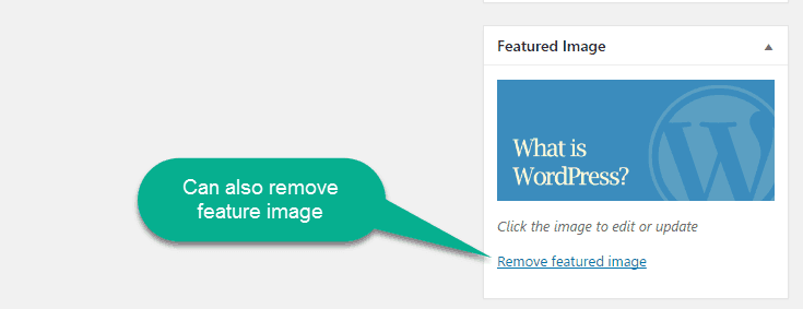 remove feature image option in worpress