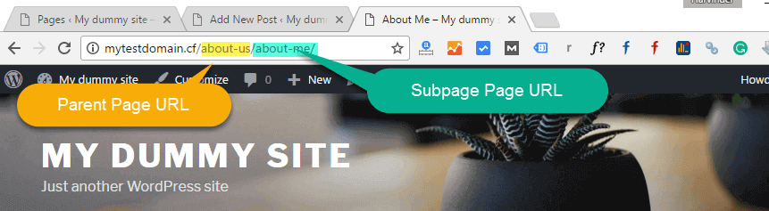 URL of Parent and Sub paege