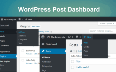 Overview To The WordPress Post Dashboard Area
