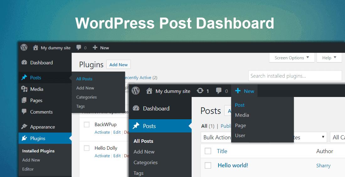 wordpress post option