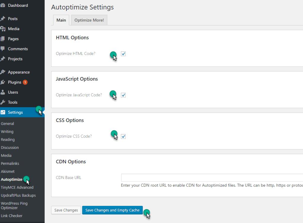 autoptimize setting