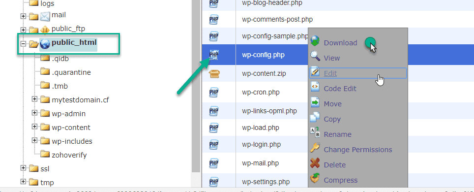 wp-config file in capnel