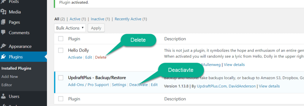 delete the wordpress plugin