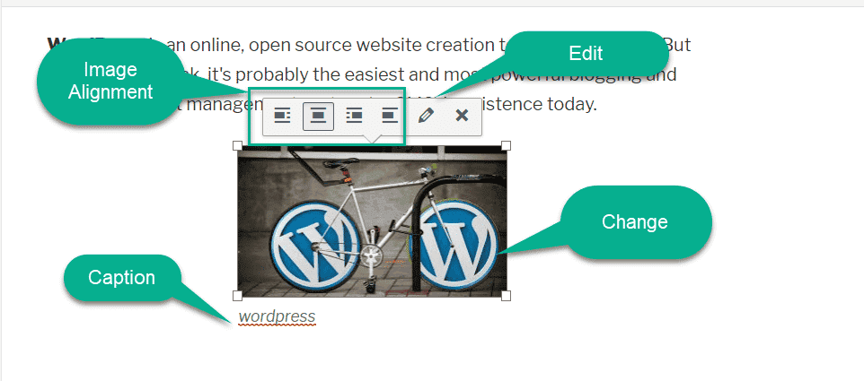 image alingment in wordpress editor