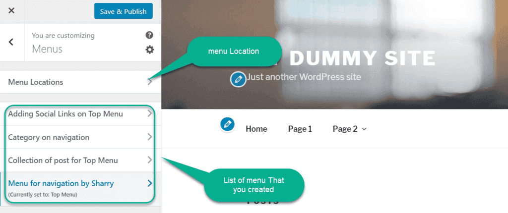 menu loaction in customizer in wordpress