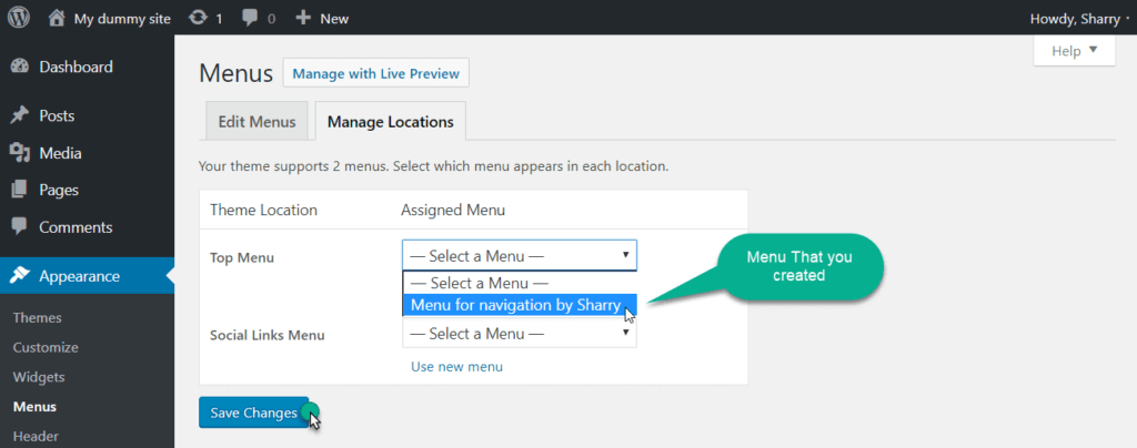 menu location option in wordpress