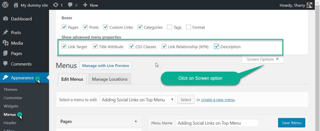 screen option in wordpress menu