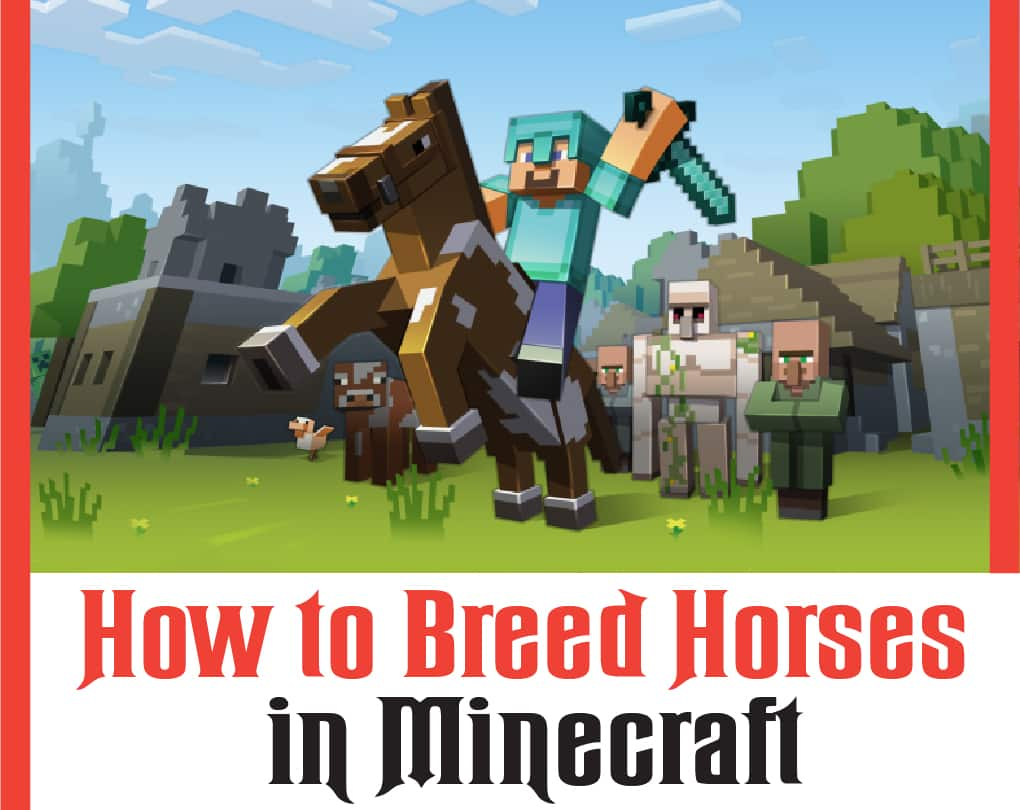 how to breed horses in minecraft pe
