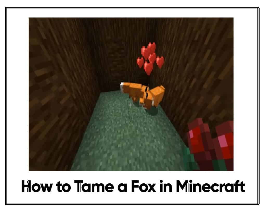 how to tame a fox in minecraft 1.14